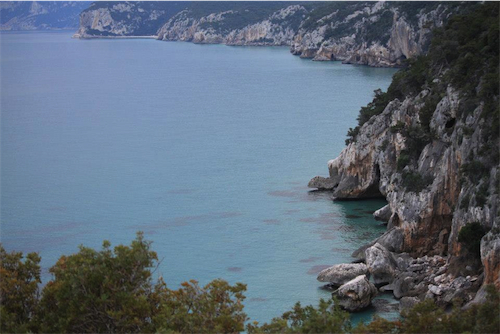 Coast South Side And Cala Luna
